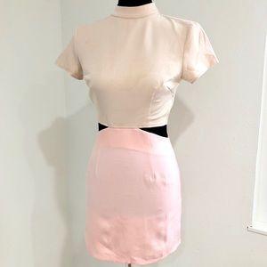 Tobi Pink & Nude Color Block Dress